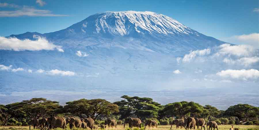 Climbing Mount Kilimanjaro for Good 365give