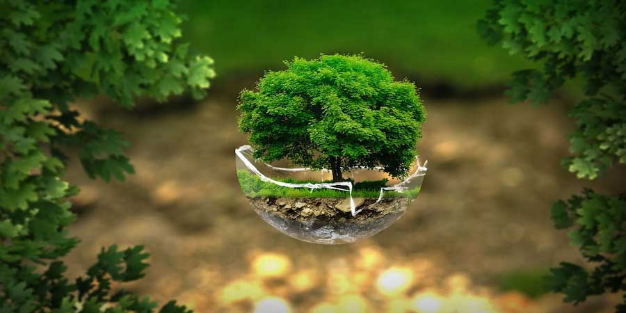 Positive environmental impact