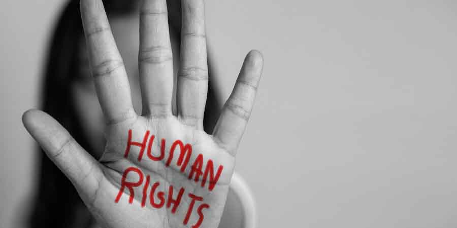 Celebrate Human Rights Day with These daily gives