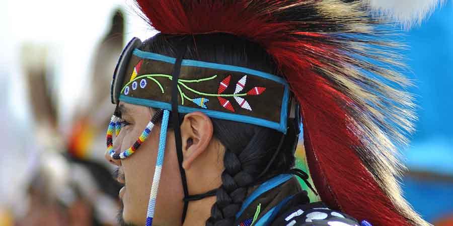 indigenous creators - 365give
